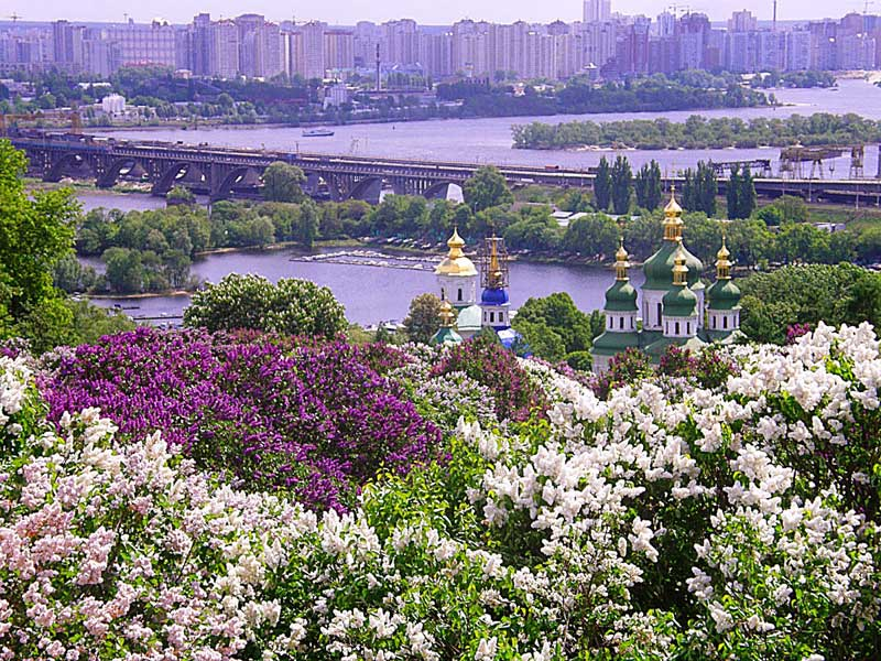 Ботанический сад Киева