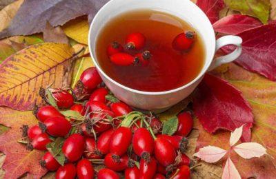 Как заварить шиповник правильно, чтобы сохранить витамины