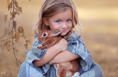 Доброта продлит жизнь или Эффект кролика